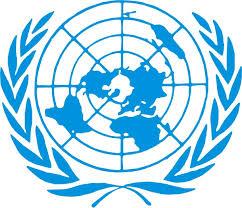 Reporte de la ONU sobre drogas – 2013
