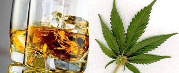 Cannabis, alcohol y accidentes mortales en la carretera